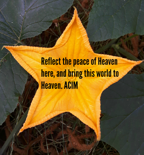 peace_of_heaven